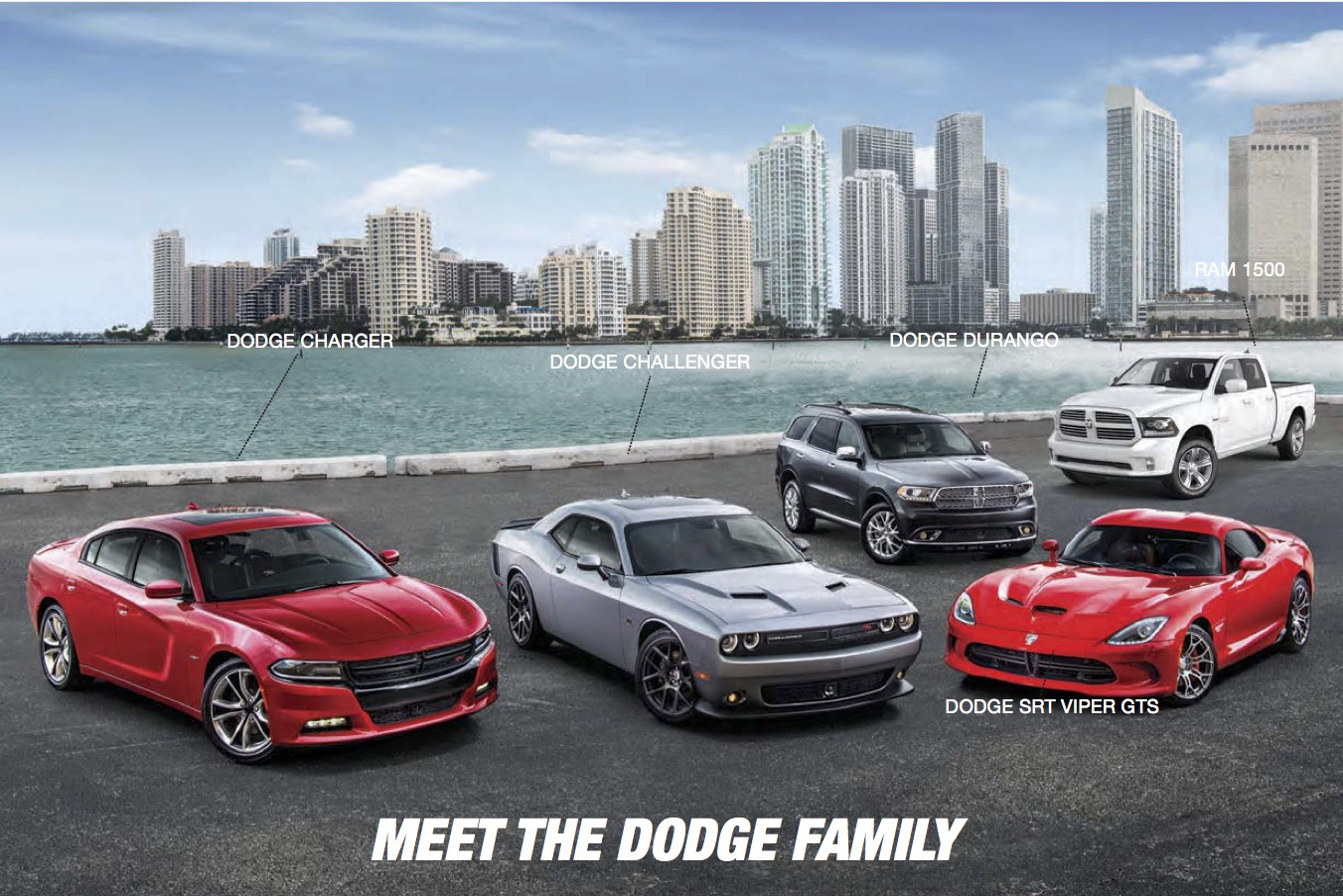 Lappi_Performance_Dodge_Family